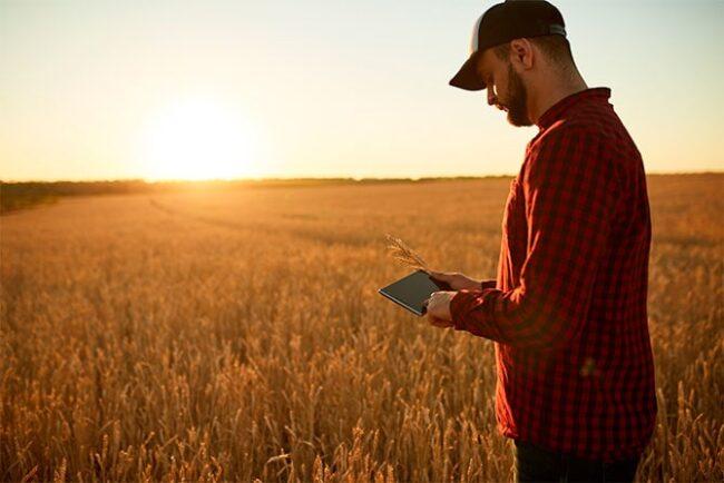 Imposto de Renda para Produtor Rural: como se precaver junto ao fisco?